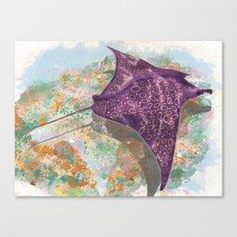 Colorful Ocean Manta Ray Canvas Print