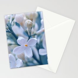 Lilacs 051 Stationery Cards
