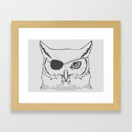 Owl Pirate Framed Art Print