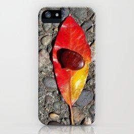 Autumnal Healing and Abundance iPhone Case