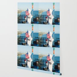 cosmonaut Santa Monica pier Wallpaper