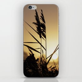 Impressions in autumn iPhone Skin