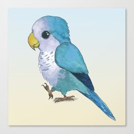 Very cute blue parrot Canvas Print