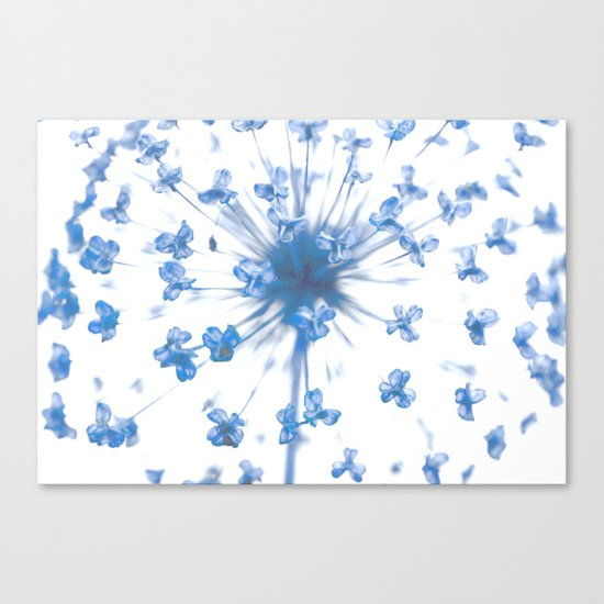 Flower Ball in Baby Blue Canvas Print