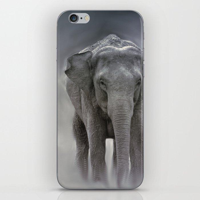 elephant in the jungle iPhone Skin