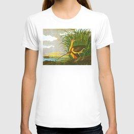 Long-billed Curlew Bird T-shirt