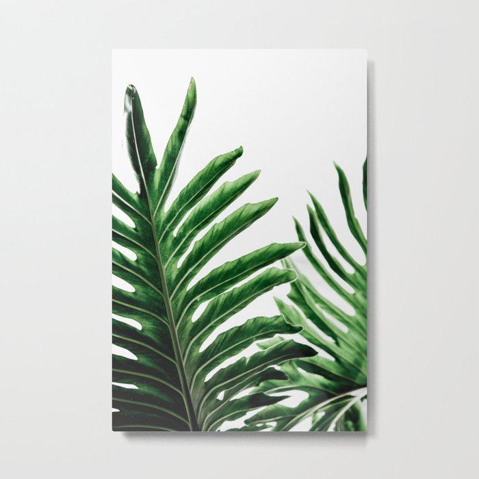 Leaves 1 Metal Print