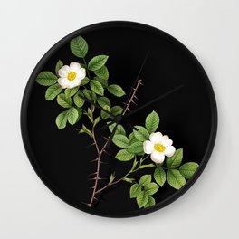 Vintage Spiny Leaved Rose of Dematra Botanical Illustration on Black (Portrait) Wall Clock