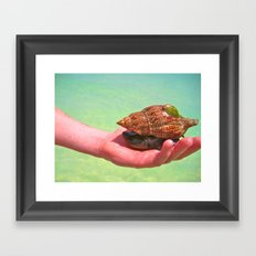 Friends Under The Sea Framed Art Print