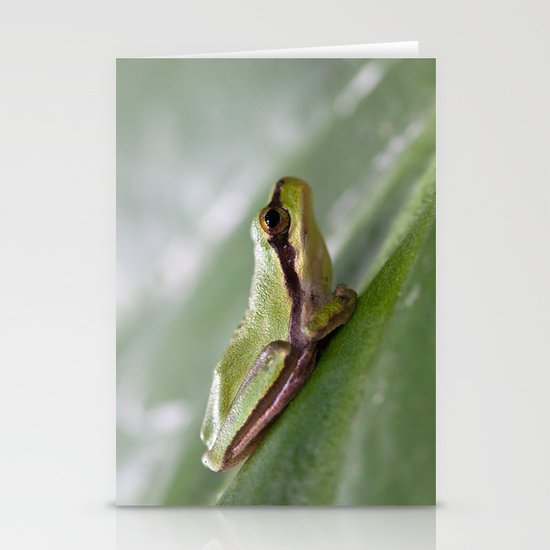 Mediterranean Tree Frog 1095 Stationery Cards