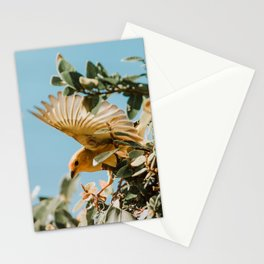 Bird Wings Stationery Cards