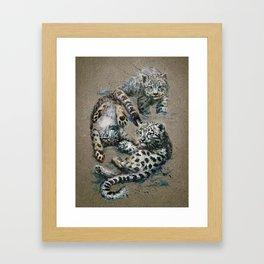 Snow leopard 2 background Framed Art Print