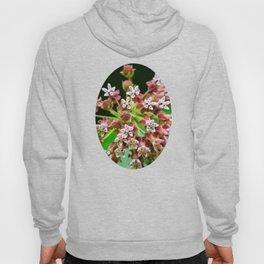 Pink Milkweed Flowers Hoody