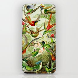 Kunstformen der Natur (Art Forms in Nature)a book of lithographic and halftones. Hummingbirds iPhone Skin