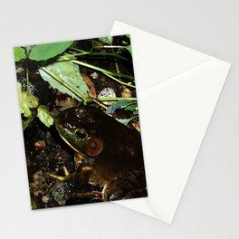 Frog - Frog Pond   Stationery Cards