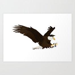 Graduation Eagle Art Print