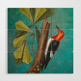 Red Headed Woodpecker with Oak, Natural History and Botanical collage Wood Wall Art
