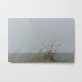 Dauphin Island Sea Grass Metal Print