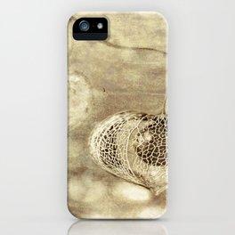 Crumbling Beach iPhone Case