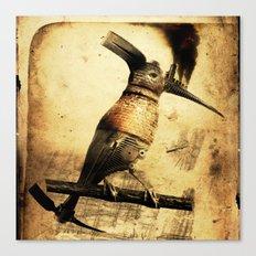 Coalminer Bird Canvas Print