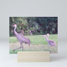Sandhill crane family Mini Art Print