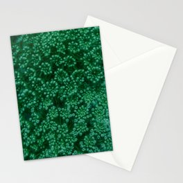 Green Queen Anne's Lace (Up Close) Stationery Cards