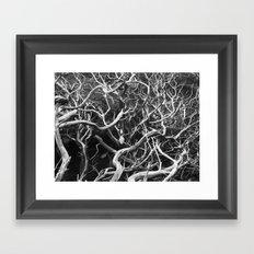 tangled branches  Framed Art Print