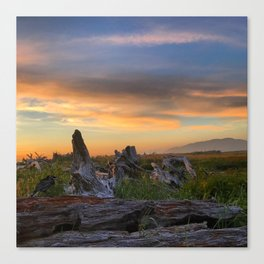 Salty Raven of Cape Meares Driftwood Sunset by Seasons K Canvas Print
