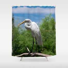 Great Egret Two - Utah Shower Curtain