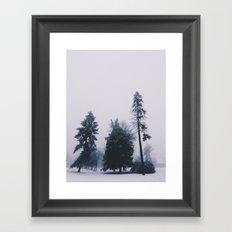 Alone in December Framed Art Print