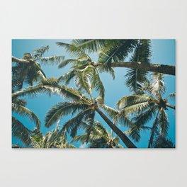Kuau Palms Paia Maui Hawaii Canvas Print