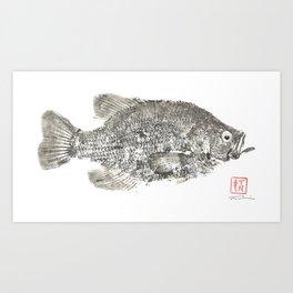 Crappie Gyotaku Art Print