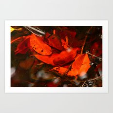 Red Coloured water Art Print