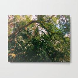 Exotic Tree Metal Print