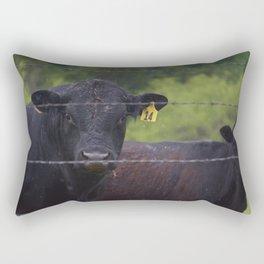 Stephen Rectangular Pillow