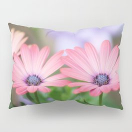 Twin osteospermum flowers Pillow Sham