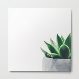 Cactus Decor Metal Print