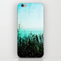 big sur iPhone & iPod Skins featuring Big Sur by Mermaid's Coin Surf Art * by Hannah Kata