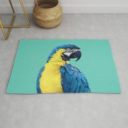 Macaw Parrot in Blue Rug