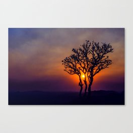 A Sunset Silhouette in Hampi, India Canvas Print