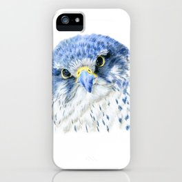 """""""Here's Looking At You"""" painting of a Gyrfalcon by Teresa Thompson iPhone Case"""