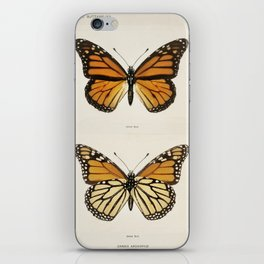 Monarch Butterfly Vintage iPhone Skin