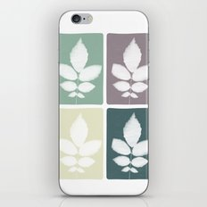 color block 4: muted iPhone & iPod Skin
