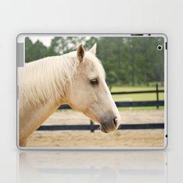 Sweet Eyes Domino Laptop & iPad Skin