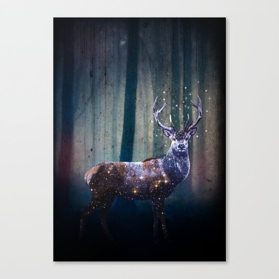 Deep In The Woods Canvas Print