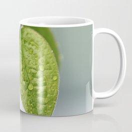 Raindrop Leaves Coffee Mug