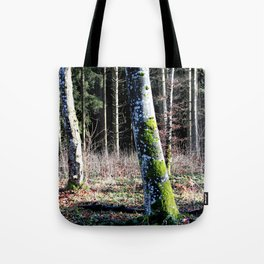 Forest in Germany 2 Tote Bag