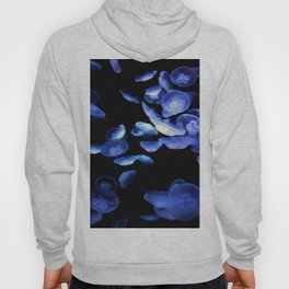 Dangerous Beauties Hoody