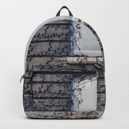 Gods window Backpack