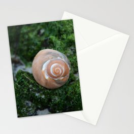 Shell on Moss Stationery Cards